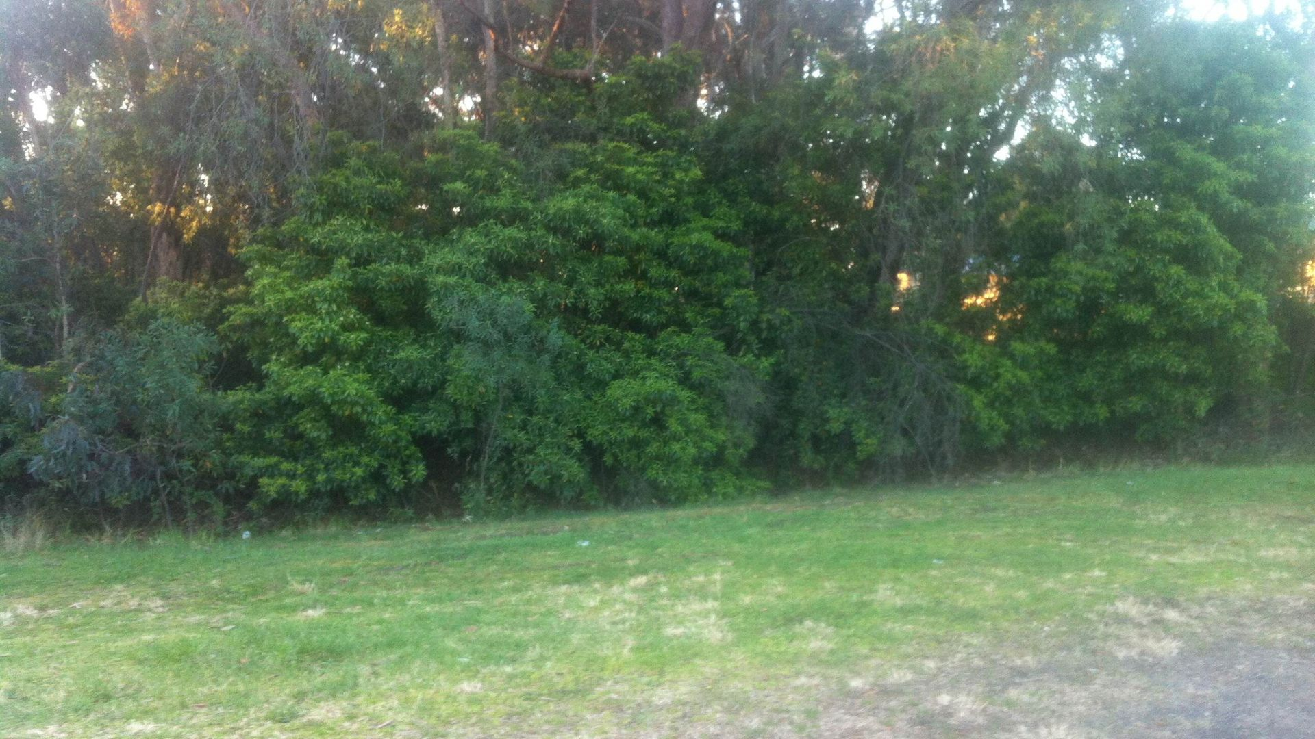 13 Loftus Street, Lawson NSW 2783, Image 1