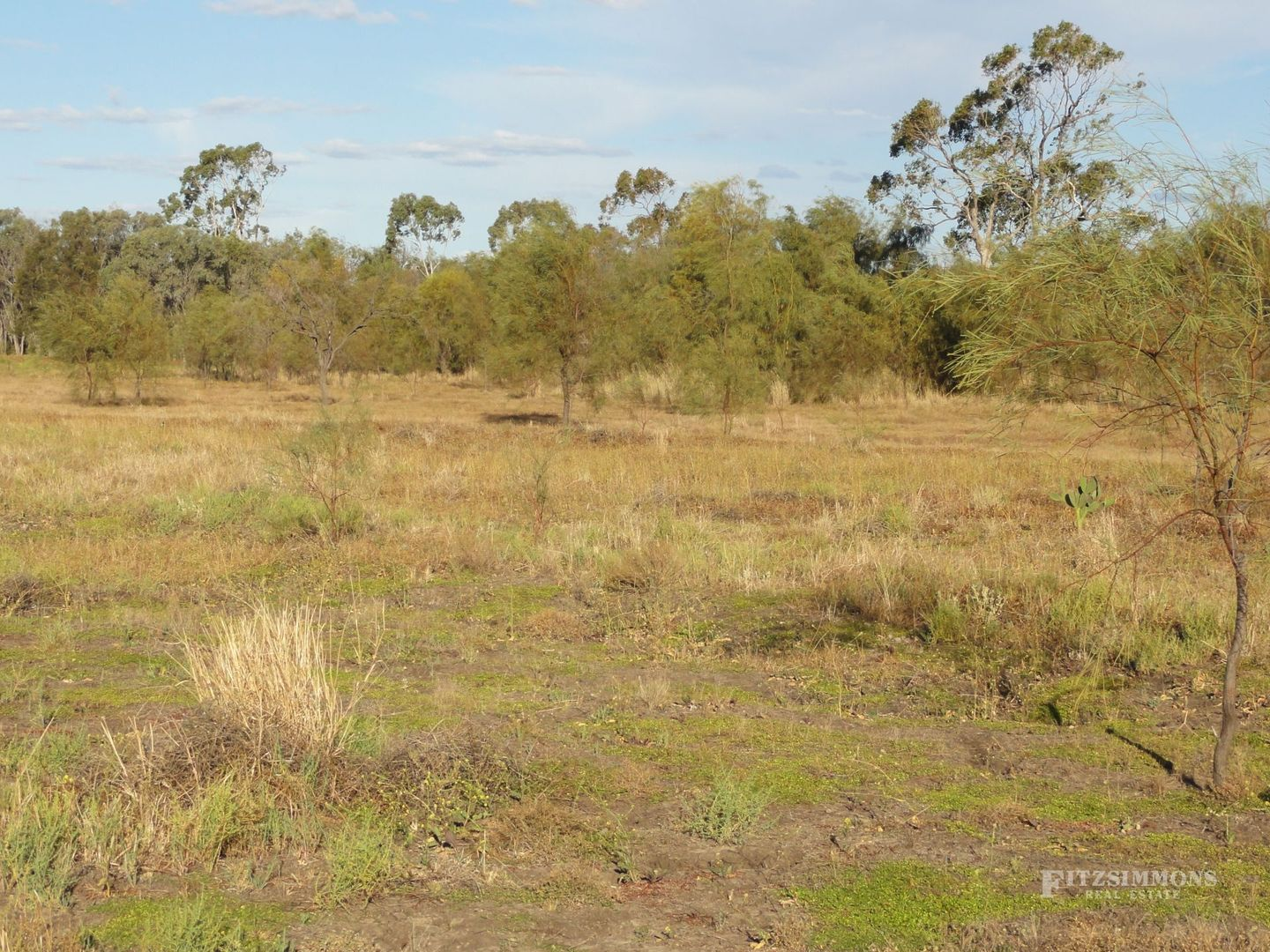 Lot 81 - 82 Armstrong Street, Dalby QLD 4405, Image 1