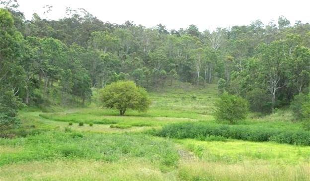 28 Boomerang Drive, Kooralbyn QLD 4285, Image 2