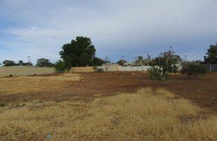 Picture of 20 & 21 Railway Avenue, Carnamah WA 6517