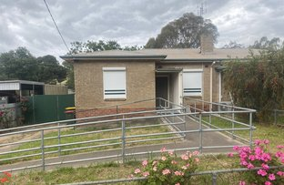 Picture of 88 PENRICE ROAD, Penrice SA 5353