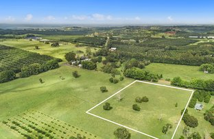 Picture of Lot 101/46 Rous Cemetery  Road, Rous NSW 2477
