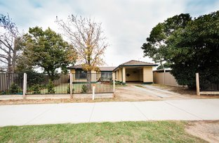 Picture of 13 Butcher Street, Echuca VIC 3564