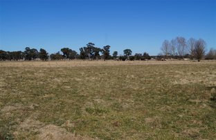 Picture of 73 lot 72 llangothlin Road, Guyra NSW 2365