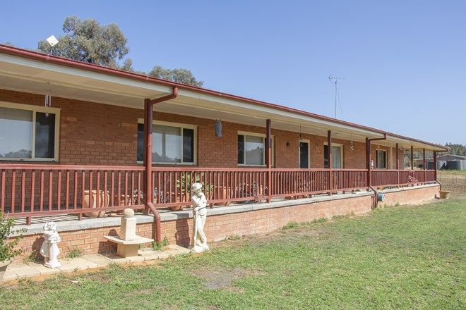 Picture of 228 CONIMBLA ROAD, COWRA NSW 2794