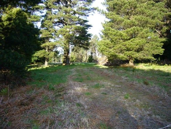 960 Grand Ridge  Road, Blackwarry VIC 3844, Image 0