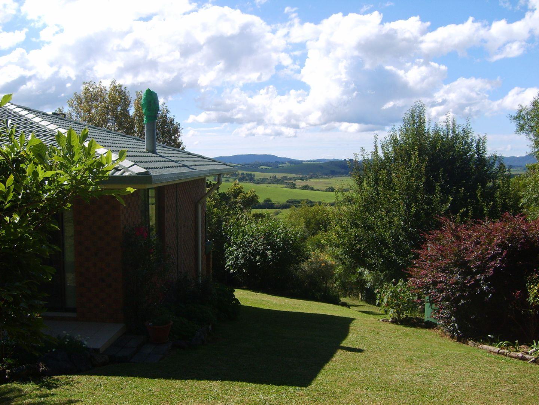 618 Maynards Plains Road, Dorrigo NSW 2453, Image 0