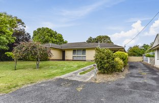 Picture of 53 Williams Road, Millicent SA 5280