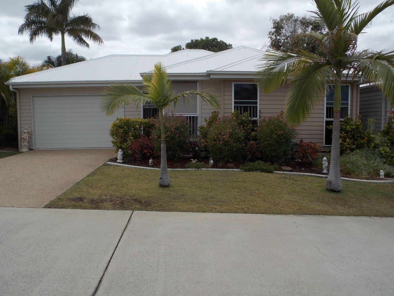 134/19 Schuffenhauer Street, Norman Gardens QLD 4701, Image 0