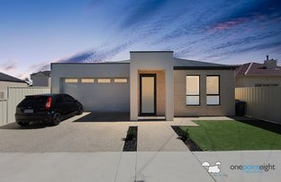 Picture of 58 Balcombe Street, Findon SA 5023